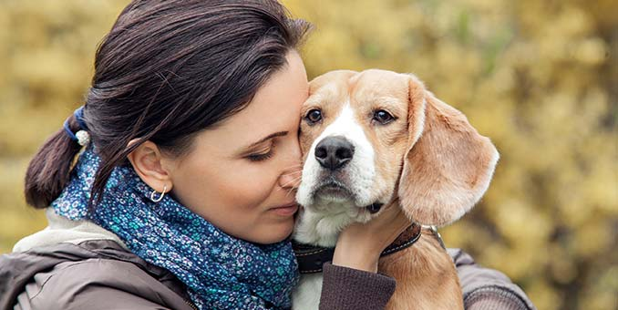 Ways To Keep Your Dog Smelling Good