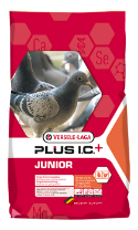 Junior Plus Ic+ 20Kg
